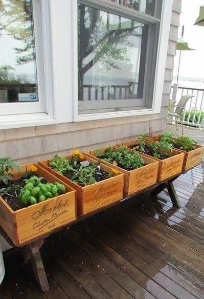como organizar la huerta en el balcon