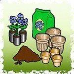 Como plantar semillas
