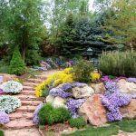 Plantas cobertoras o tapizantes. Una alternativa al césped