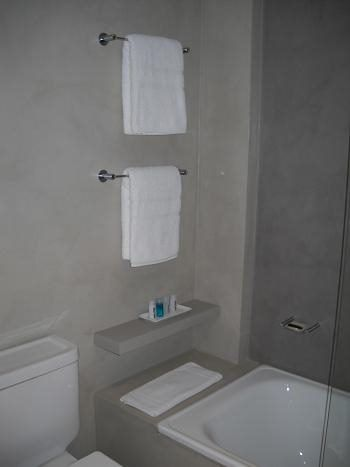 Dscn0824 casa web for Pared de bano de concreto encerado
