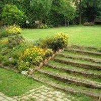 Cuidados para tu césped de tu jardín