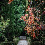 jardin estilo antiguo jardin renacentista