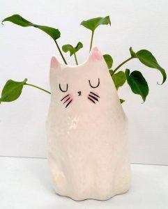 maseta de interior gato
