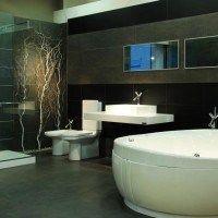 baño modernos bañadera y ducha