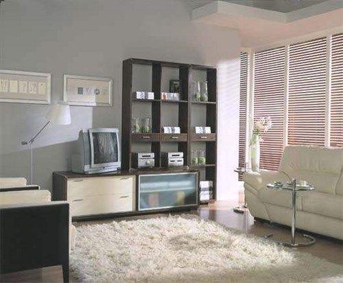 Seleccionar una alfombra para el living casa web - Salones con alfombras ...