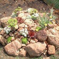 jardin rocoso