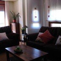 decoracion living con sofa marron