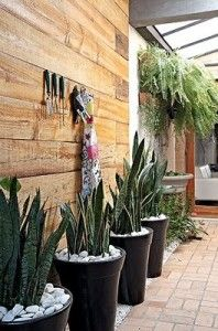 decoracion de jardines de invierno