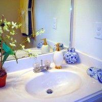 las plantas en el baño