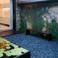 patio interno con piedra planta y estanque