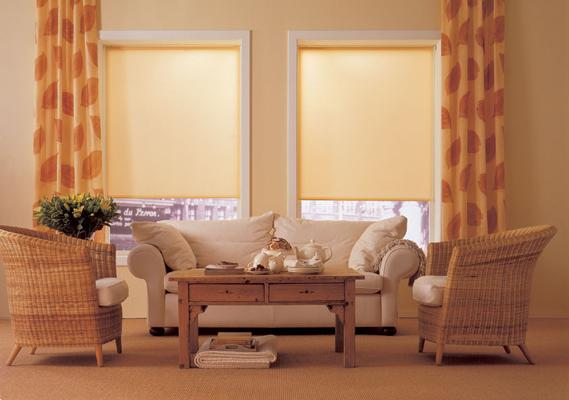 Cortina roller living casa web for Cortinas de living