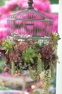 Adornos de exterior para jardin - jaula con plantas