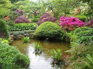 jardin con estanque decorado con plantas ornamentales