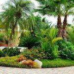 jardin con plantas ornamentales