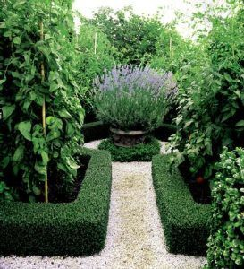 jardin decorado con plantas ornamentales