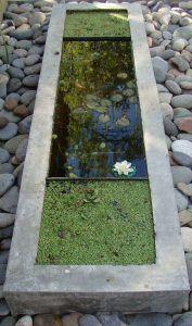 estanque pequeño moderno