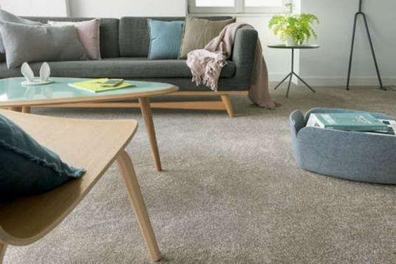 living moderno con alfombra
