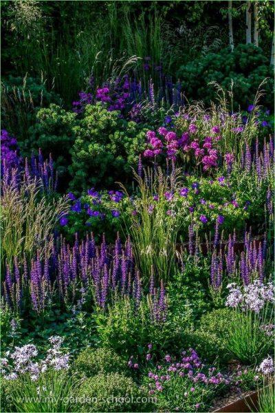 jardin con colores analogos azules lilas y violetas