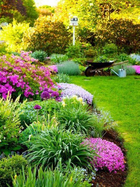 jardin en tonos violetas y lilas colores analogos