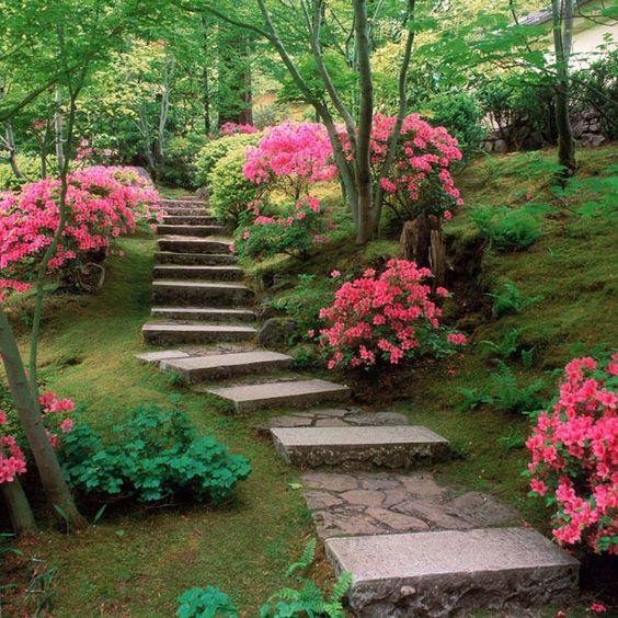 jardin monocromatico rosa