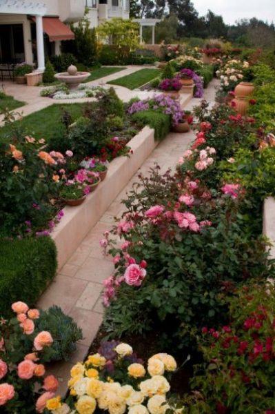 jardines con rosas multicolores