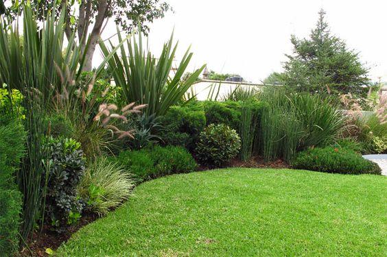 parquizacion en tonos verdes con arbusto