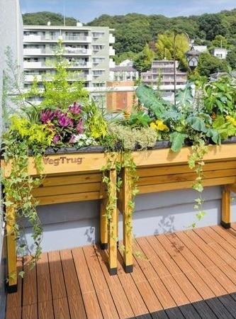 ideas de huerta para balcon