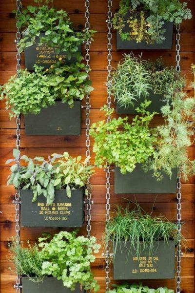jardin vertical con plantas aromaticas