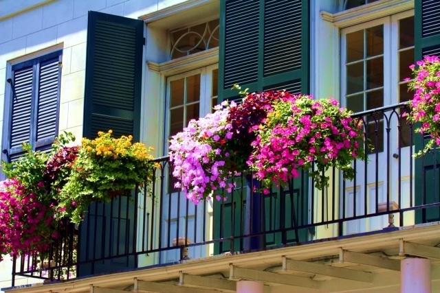 decorar balcones con flores y plantas