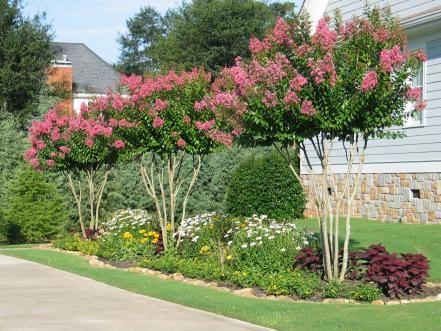 diseño de jardin simple y facil
