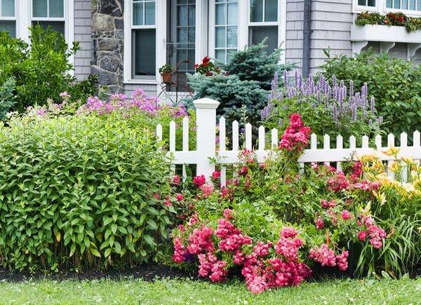 jardin con plantas de bajo mantenimiento