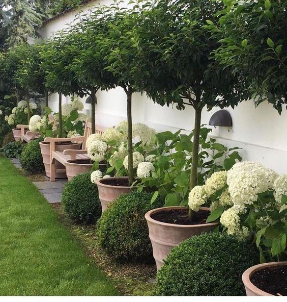 jardin simple y elegante 1