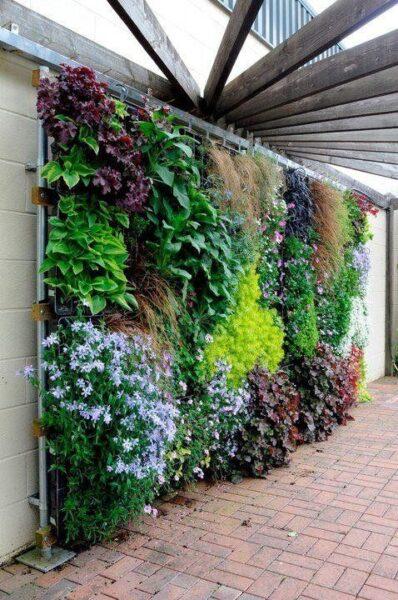 Jardin vertical con variedad de plantas para decorar muros