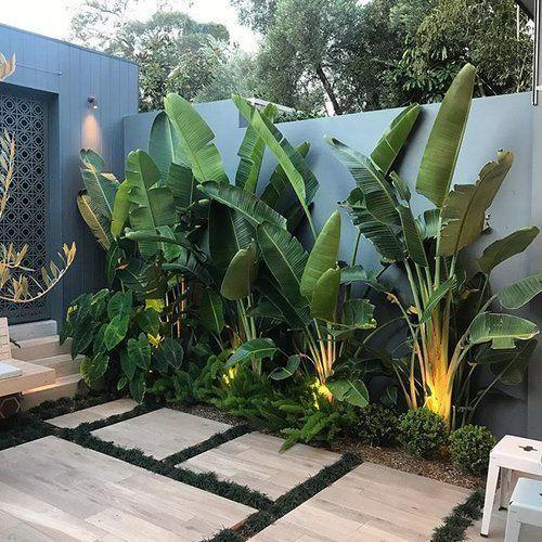 Patio o Jardin con muro pintado de azul grisaseo