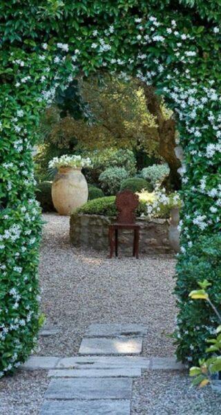 arco para jardin con planta trepadora jazmin estrellado