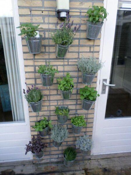 decorar pared exterior con macetas de aluminio con aromaticas