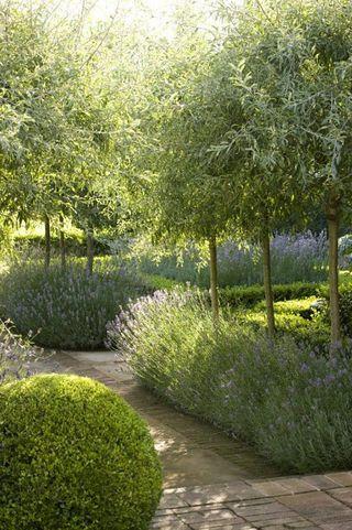 canteros para adornar el jardin